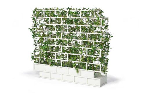 greenwall-01